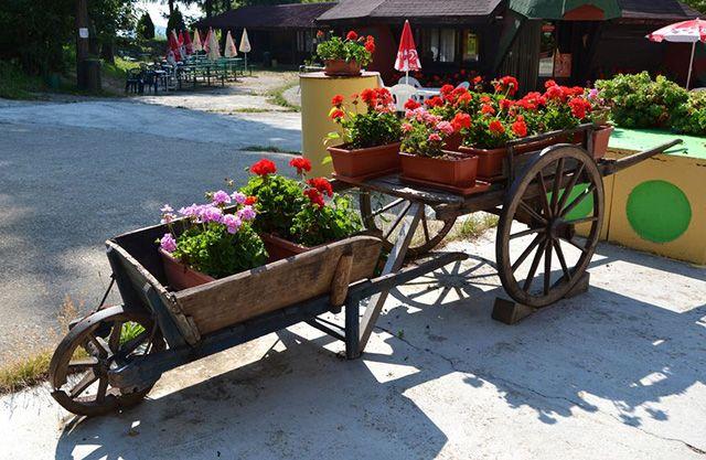 34 Of The Best Wheelbarrow Planter Ideas. Wheelbarrow PlanterFlower  CartOutdoor GardensOutdoor ...