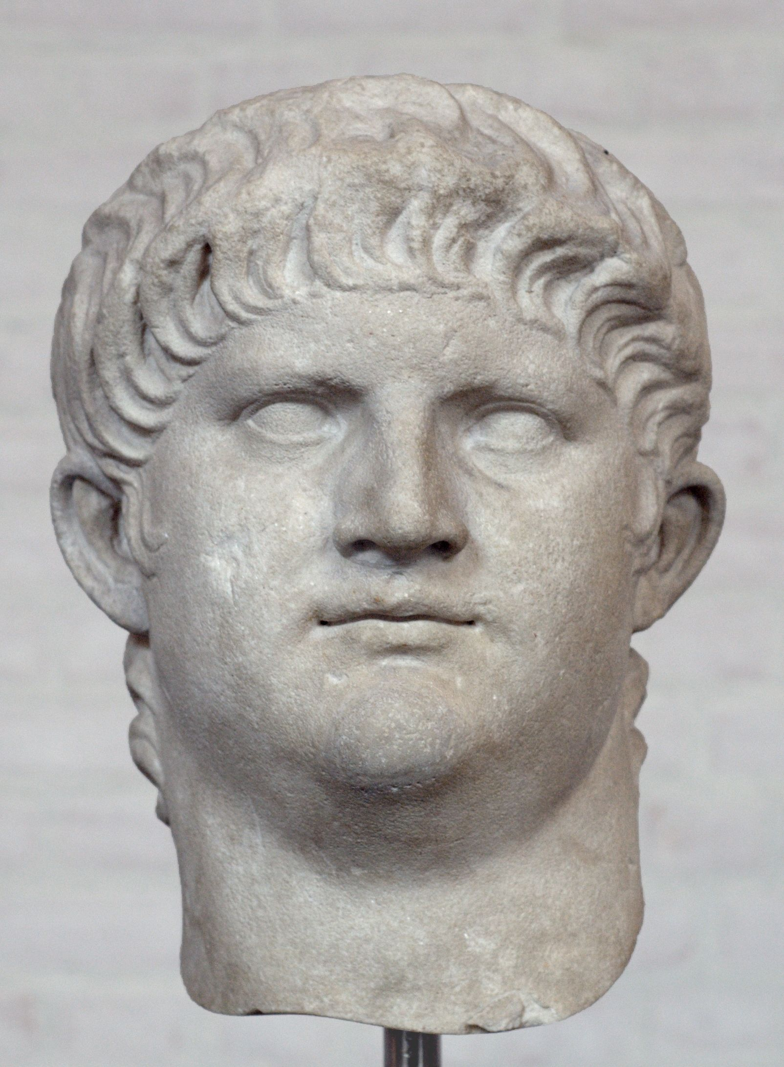 the last emperor of the julio claudian dynasty history essay Nero was the last of the julio-claudian dynasty  for the rest of imperial history,  what made an emperor – or what gave one candidate  classical antiquity, wrote  a short article (reprinted in his critical essays) on 'tacitus and.