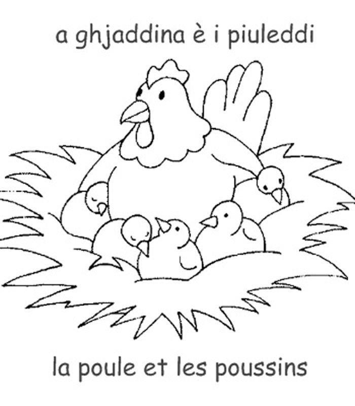 Coloriage Bebe Poussin.Dessin Poule Poussin Az Coloriage Easter Pergamano