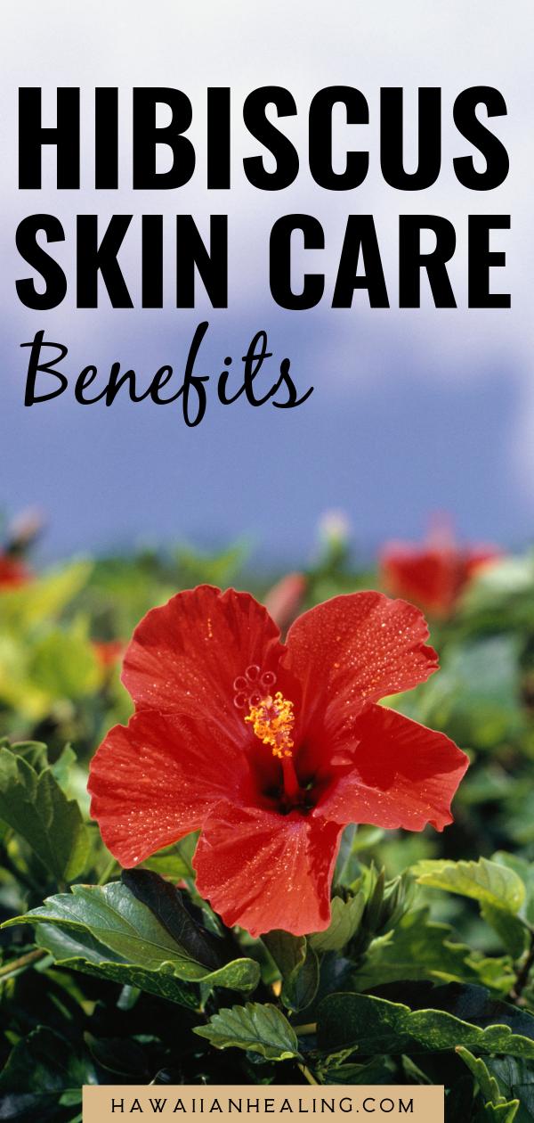 Meet Our Ingredients Organic Hibiscus Flower Extract Organic Hawaiian Hibiscus Flower Extract Skin Ca In 2020 Organic Skin Care Recipes Skin Care Benefits Hibiscus