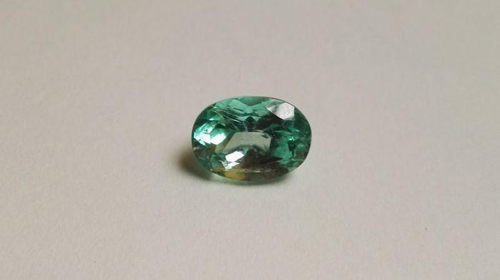 Smaragd - 282 ct  Type steen: Natuurlijke emerald  Natuurlijke Beryl.Colombiaanse smaragd kleur groen A met IGE certificaat.De foto's zijn genomen in het daglicht.Gewicht: 2.82 ct.Cut: Ovaal gemengd.Kleur: Een groen.Emeralds met weinig insluitsels.Afmetingen: 1020 x 734 x 643 mm.Oorsprong: Muzo Colombia.Toebehoren: Kleurloze olie-Crack vullen.IGE Certificaatnummer: 9136 1765 5169.Verzendkosten zijn niet inbegrepen.Kunnen worden verzameld in persoon in Madrid.Verzending via aangetekende post…