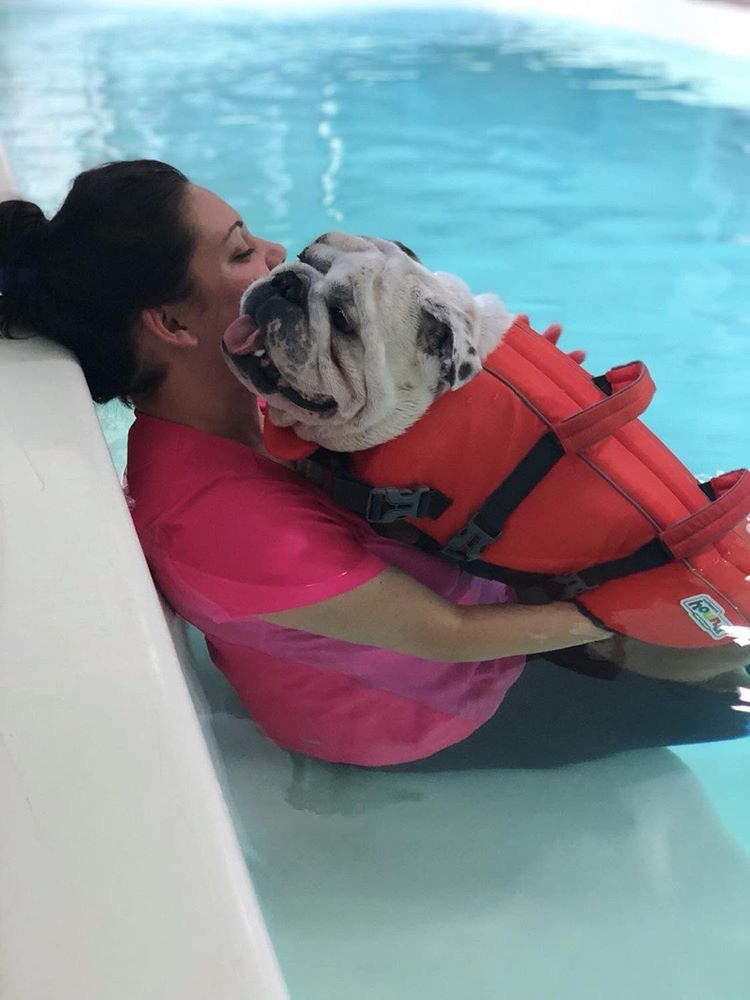 In Home Hydrotherapy 40 Swim 4 Pack Us Swimming Swimming Swim Lessons