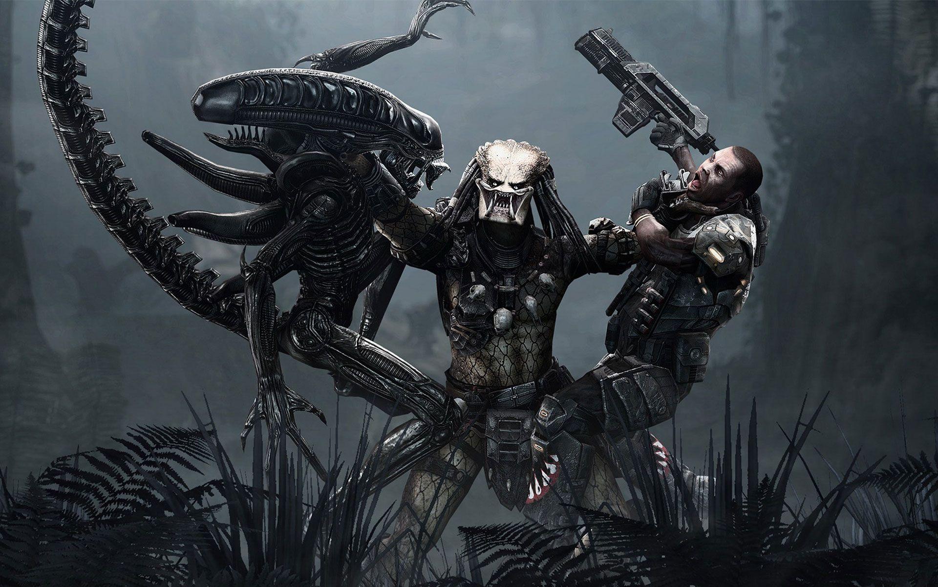 Preadator Fondo Pantalla Predatorfondo Escritorio Predator