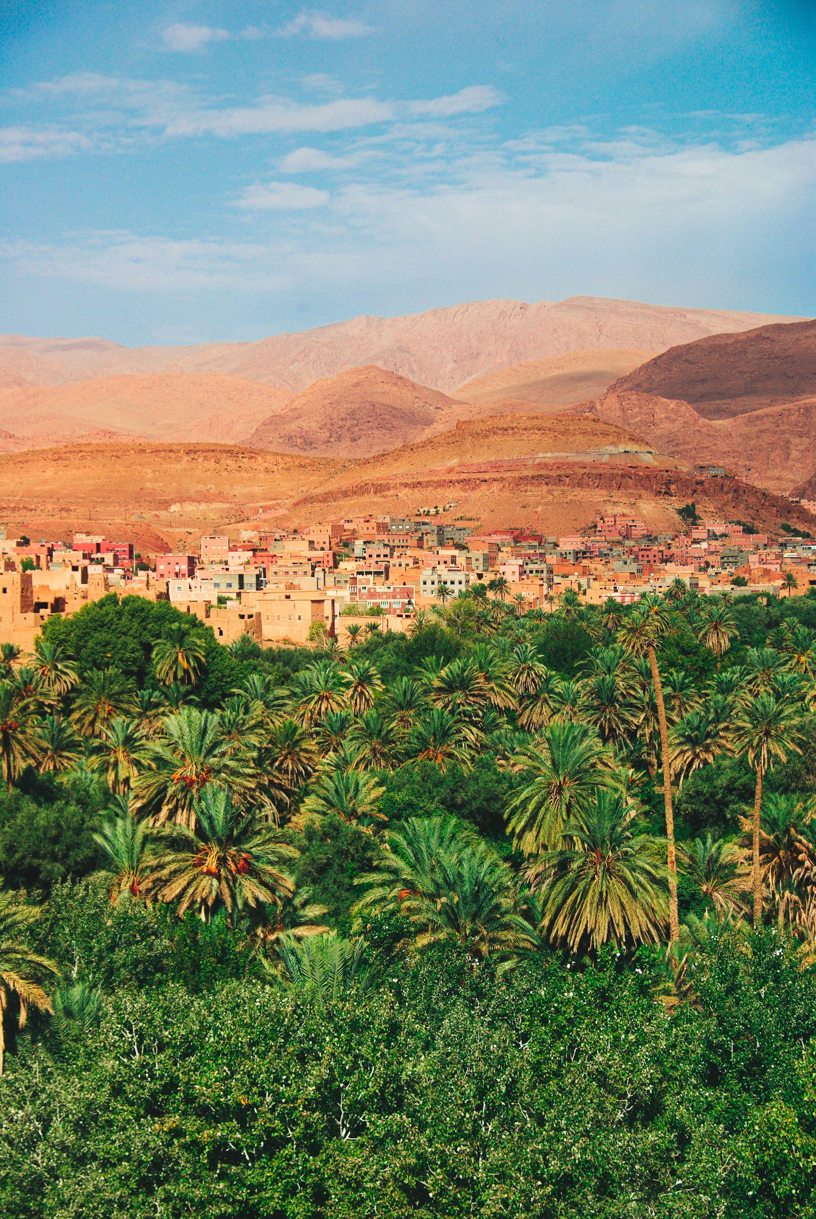 Photo by Mari Potter  #marokko #morocco #afrika #noordafrika #reizen #travel #vakantie #stedentrip