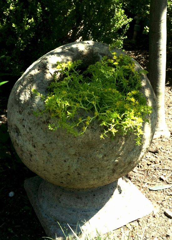 Hypertufa Spheres Diy Cement Concrete Hypertufa Hollow Sphere For Planting Concrete Garden Whimsical Garden Garden Containers