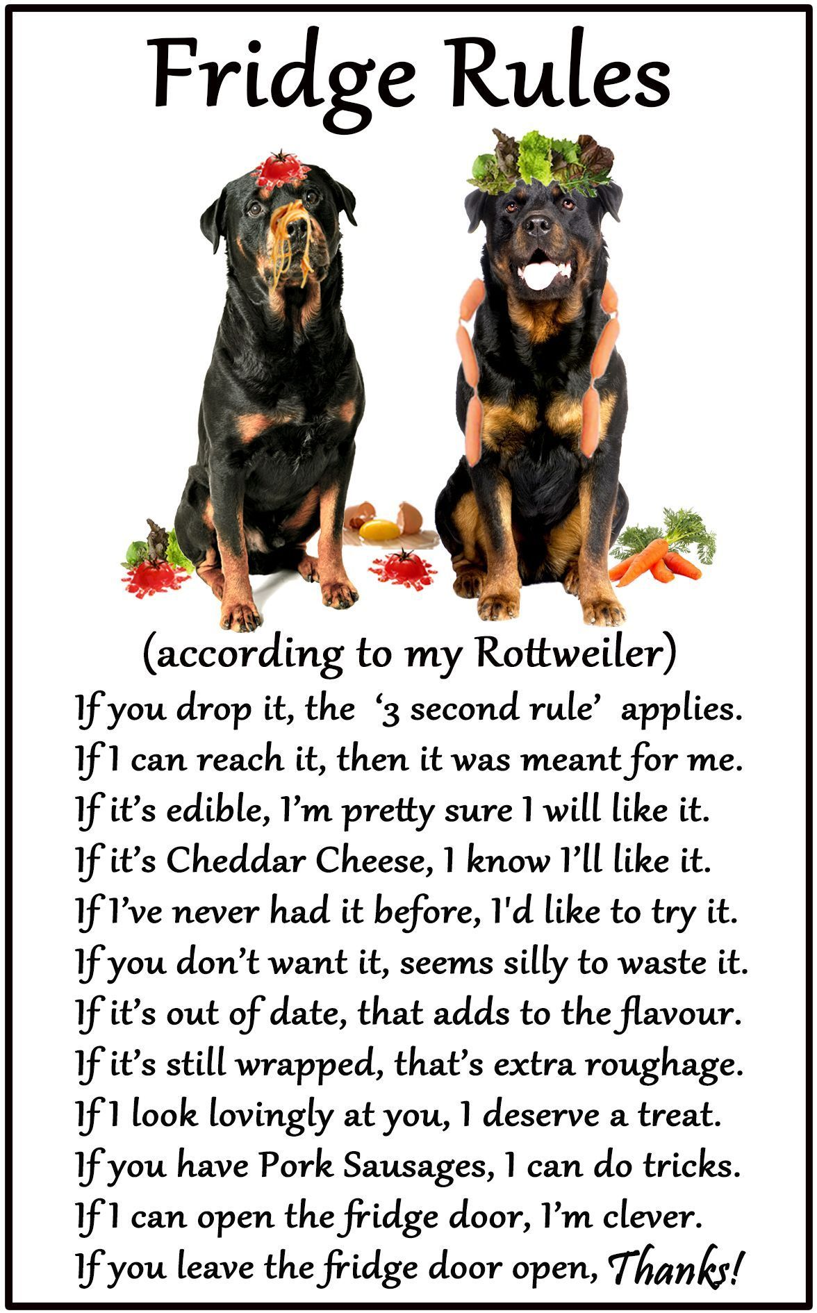 Rottweiler Humorous Magnetic Dog Fridge Rules Size 6 X 4