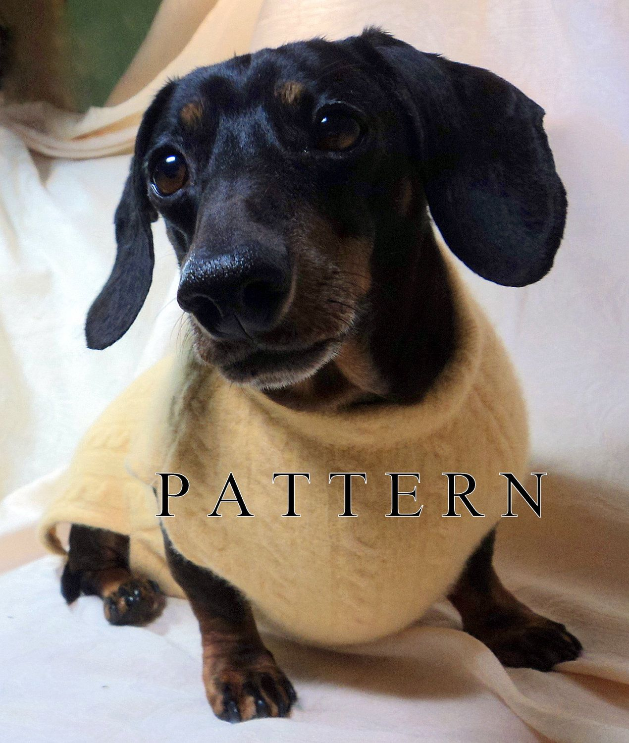 Dachshund Pattern To Sew A Sweater Snood Handmade Pets Clothing