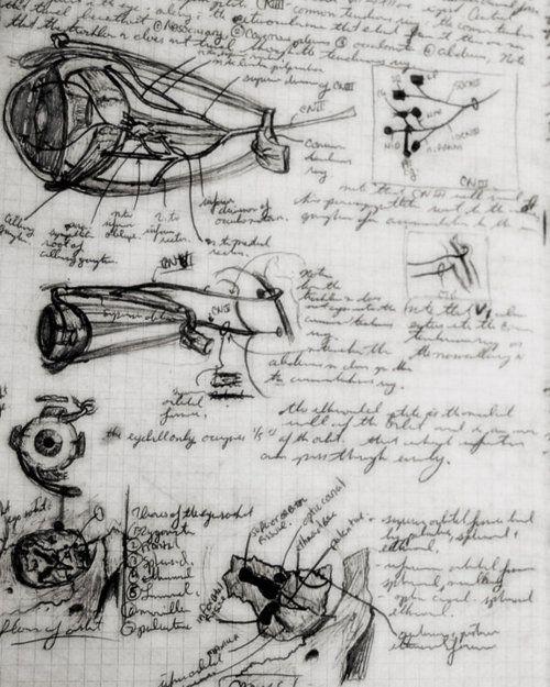 medical notebook, handwritten notes