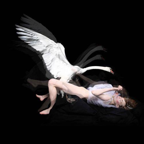 Love's Dream, 2012  Derrick Santini