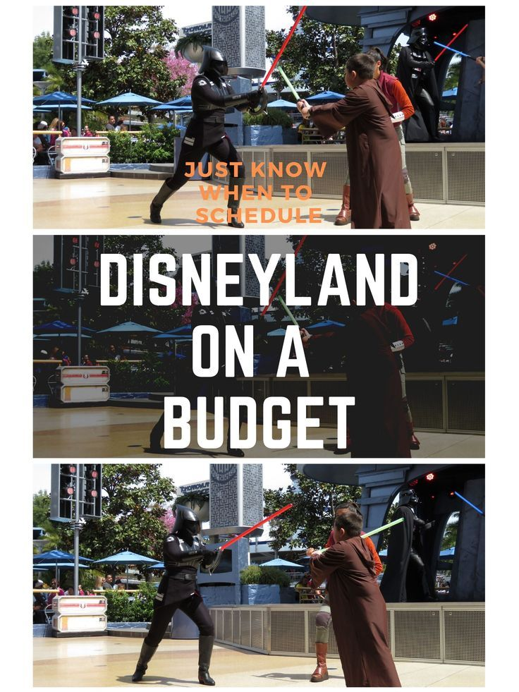 Disneyland Vacation, The Happiest Place On Earth Decade