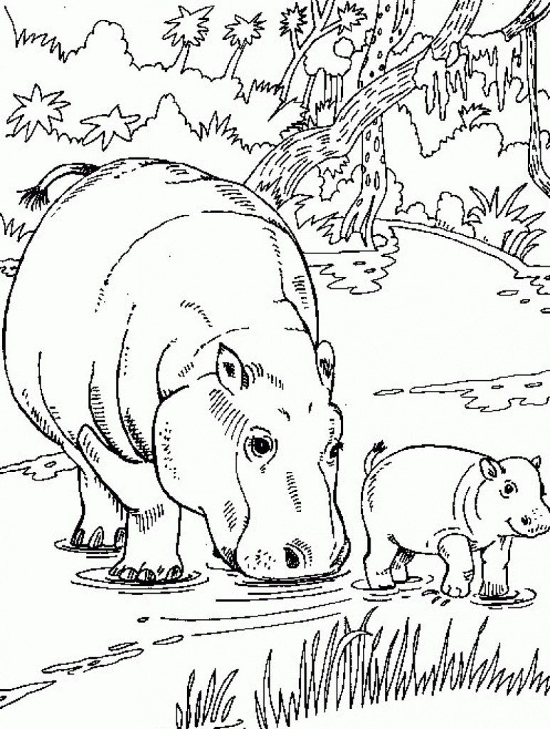 Free Printable Hippo Coloring Pages For Kids Animal Coloring Pages Animal Templates Free Coloring Pages