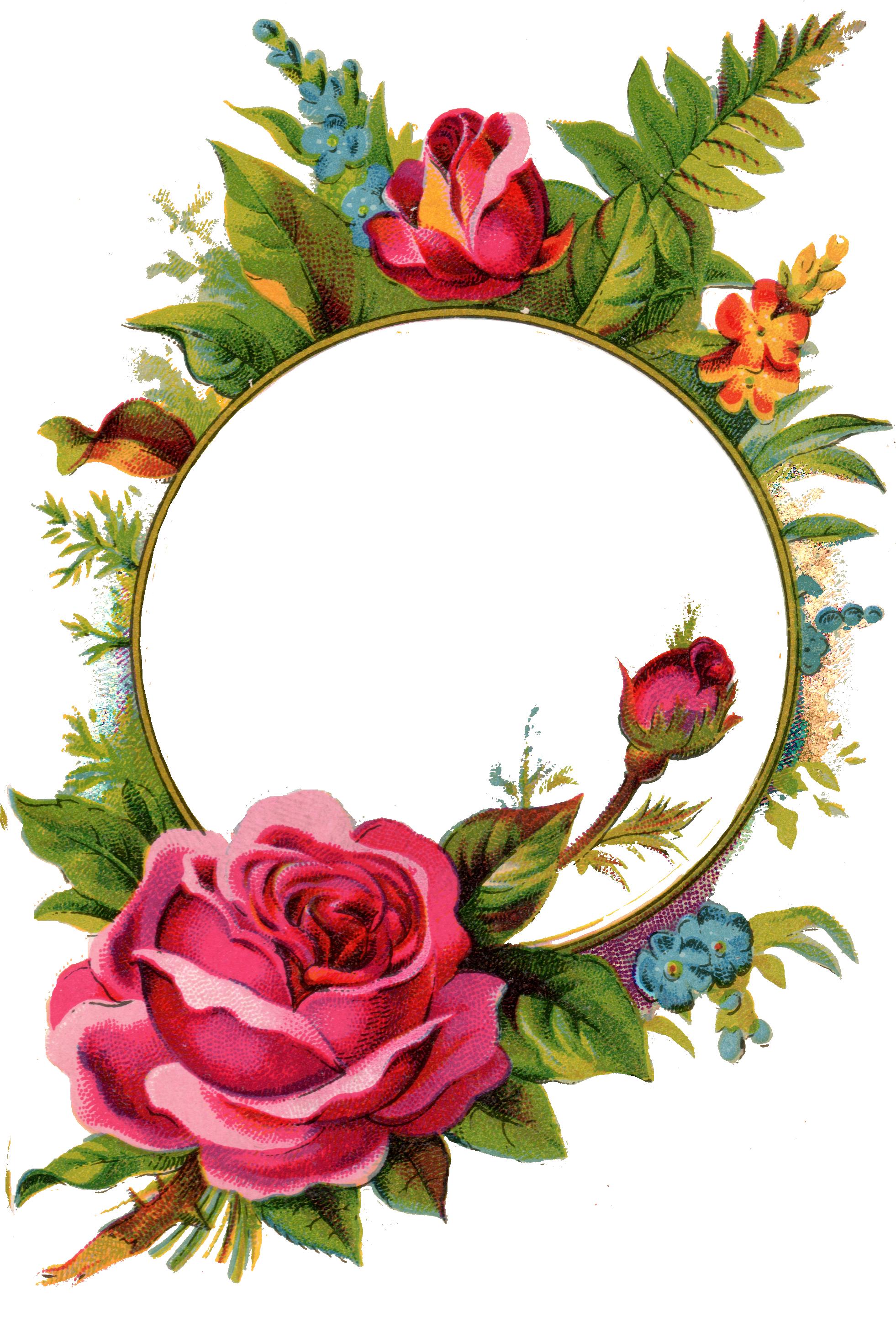 Large Iron on Transfers Rose frame, Flower frame, Photo