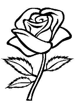 Kleurplaten Van Roos.Kleurplaten Bloemen Roos Google Zoeken Drawing Rose Coloring
