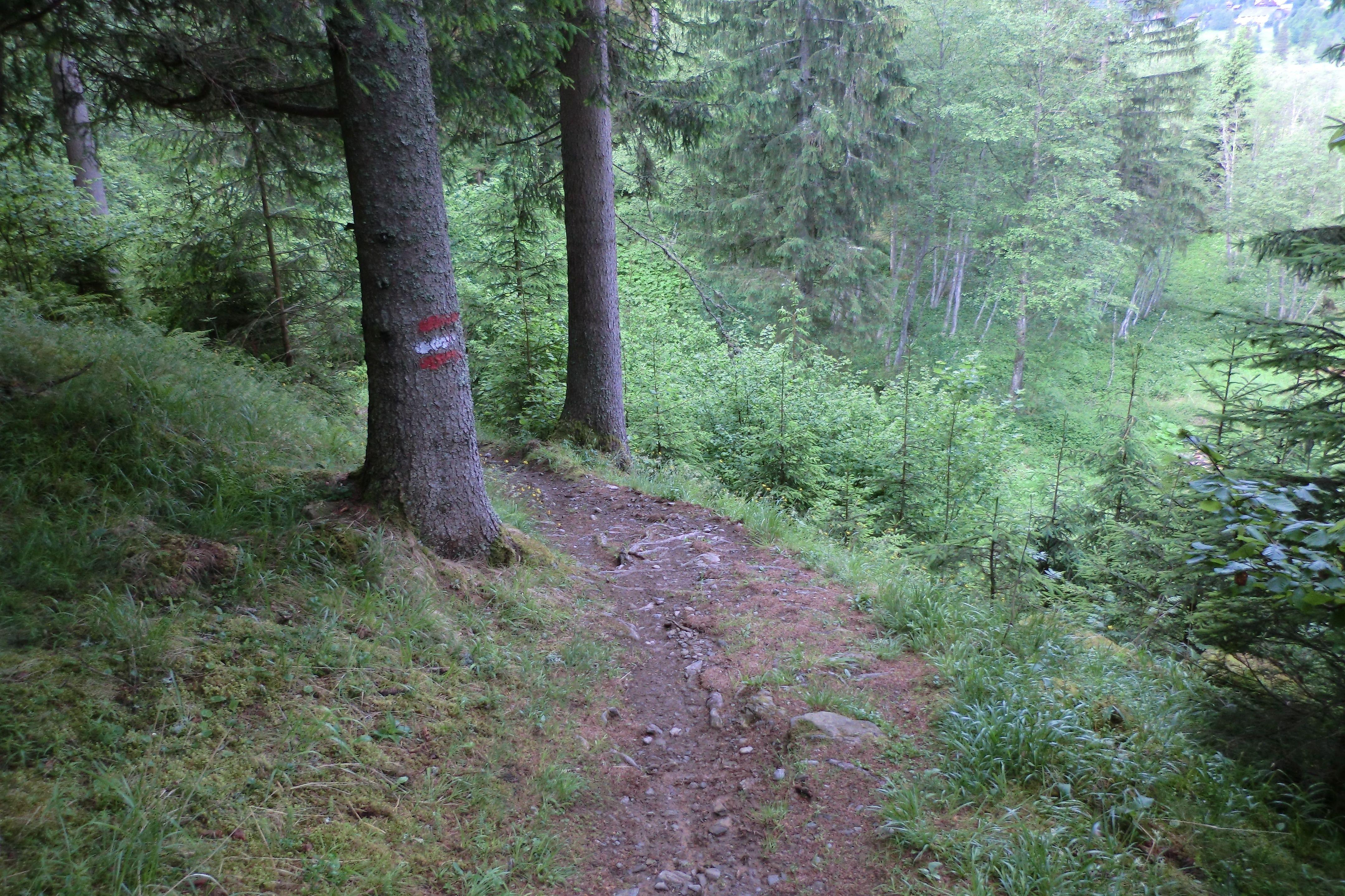 Der Höllenberg Weg. Super