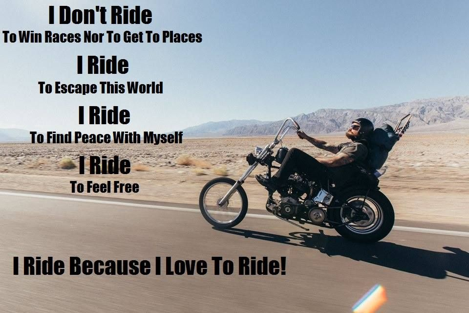 My Favorite Motorcycle Pictures and Memes Page 4 in 2020   Motorcycle memes,  Motorcycle pictures, Custom baggers