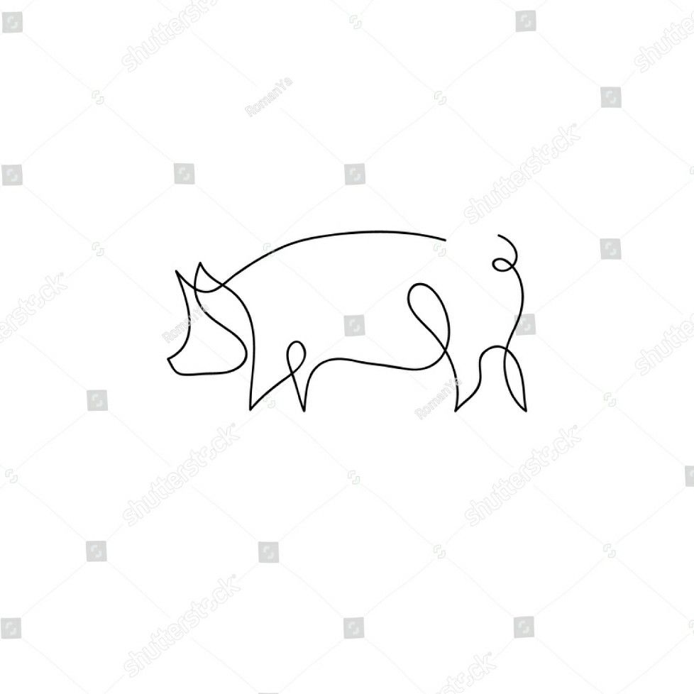 Single Line Pig Drawing Animal Line Drawings Pig Illustration Drawings