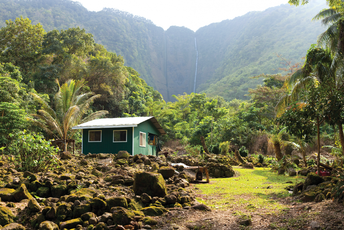 Growing medical marijuana in hawaii our future life for Big island cabins