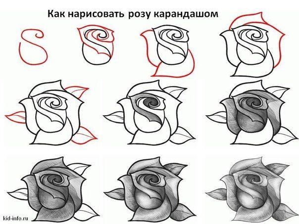 Resultado De Imagen Para Como Dibujar Flores Paso A Paso Dibujo En