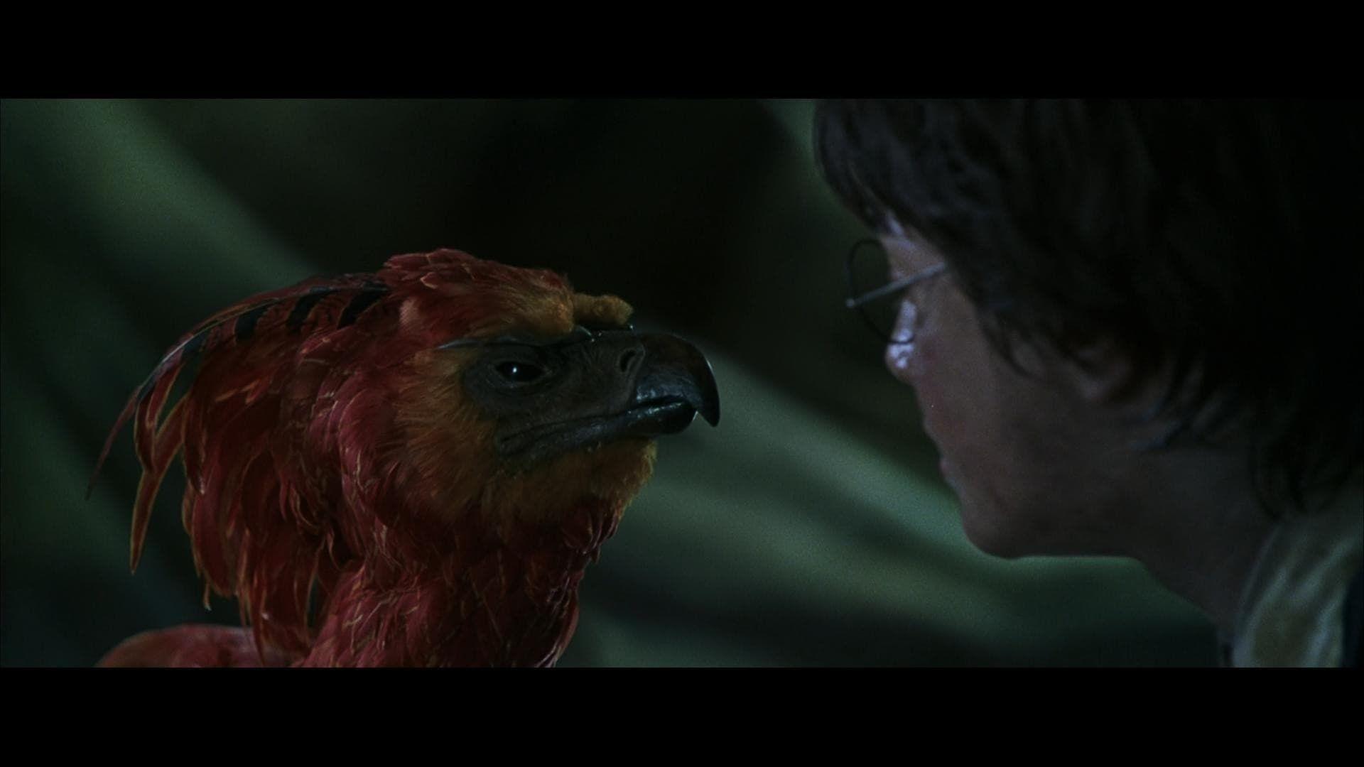 Watch Harry Potter Y La Camara Secreta 2002 Putlocker Film Complet Streaming Harry Regresa A Su S Chamber Of Secrets Free Movies Online Full Movies Online Free