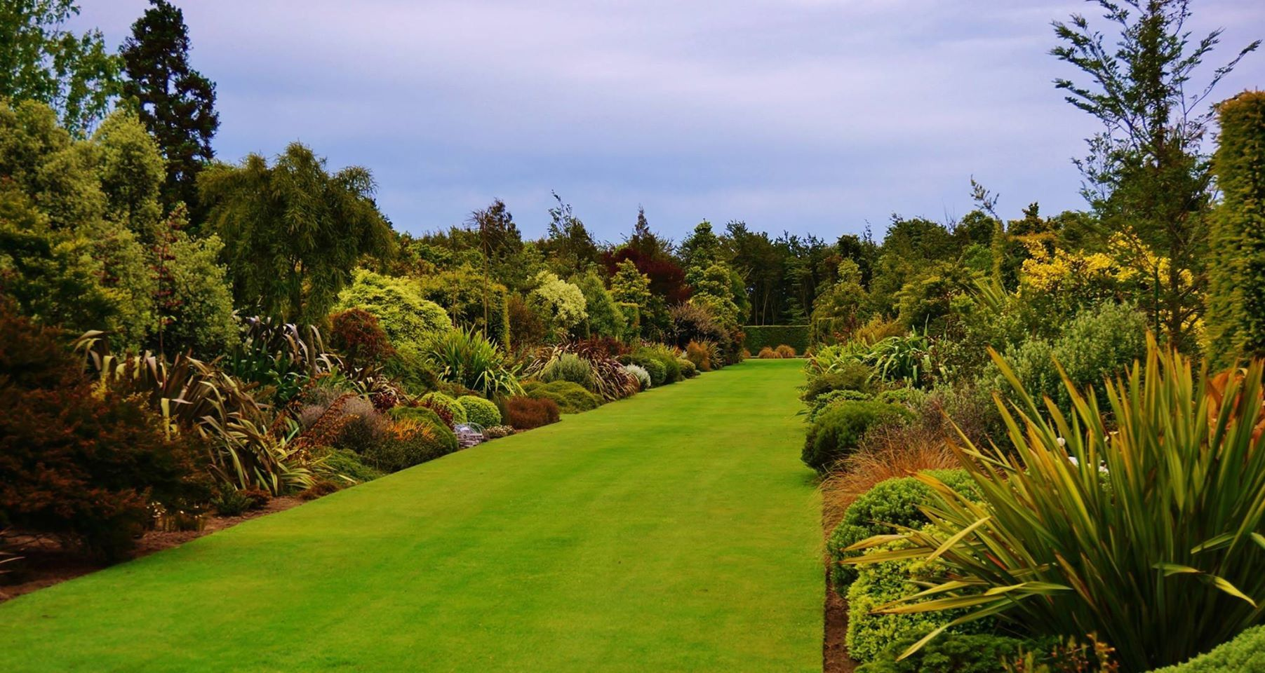 100m long double borders of nz native plants broadfield for Residential landscape design christchurch
