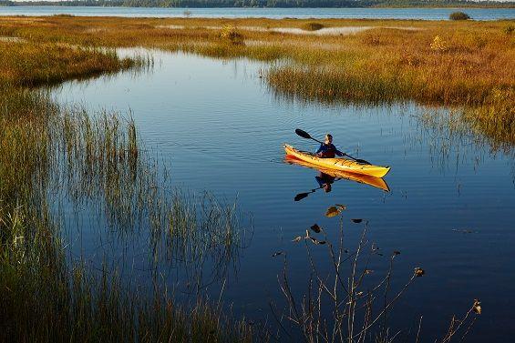 Kayaking Along Rieboldt Creek In Door County Wisconsin Water Activities Door County Water