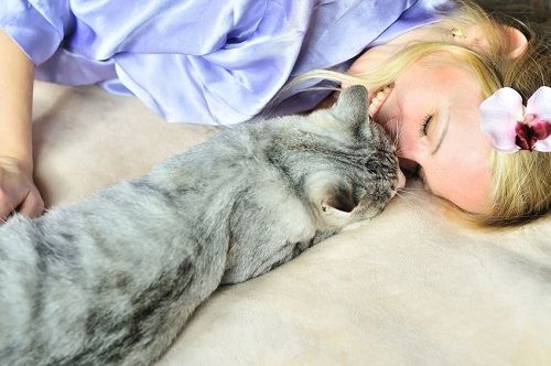 Easy Ways to Keep a Cat Healthy