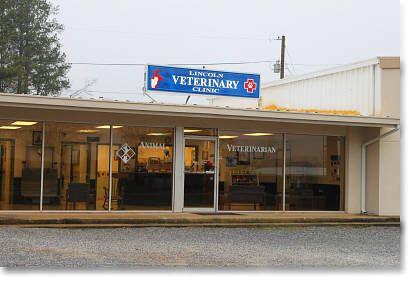 Lincoln Vet Clinic website | Vet clinics, Outdoor decor ...