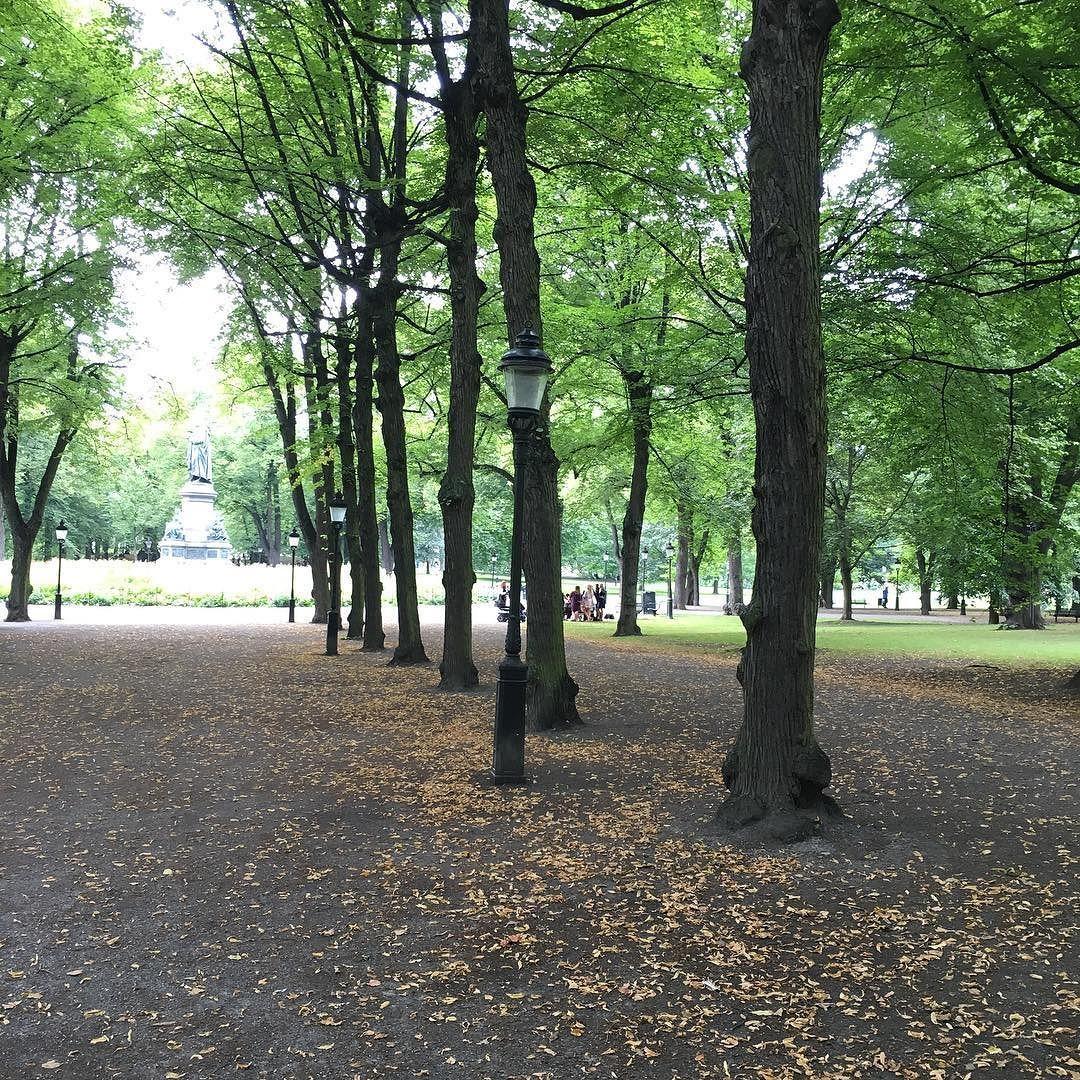 Io e Noah conosciamo il nome di questi alberi uno per uno Domani rientriamo in Italia dopo due mesi preziosi qui in Svezia  e stiamo ringraziando la Natura per le amorevoli confidenze che su questi prati ci ha fatto...  È in questo verde smeraldo che Noah ha imparato a gattonare e io a godermi la mia voce di dentro!  P.S. Torniamo presto è una promessa!  #stockholm #stoccolma #svezia #sweden #humlegården #nature #green #grateful #natasciapane