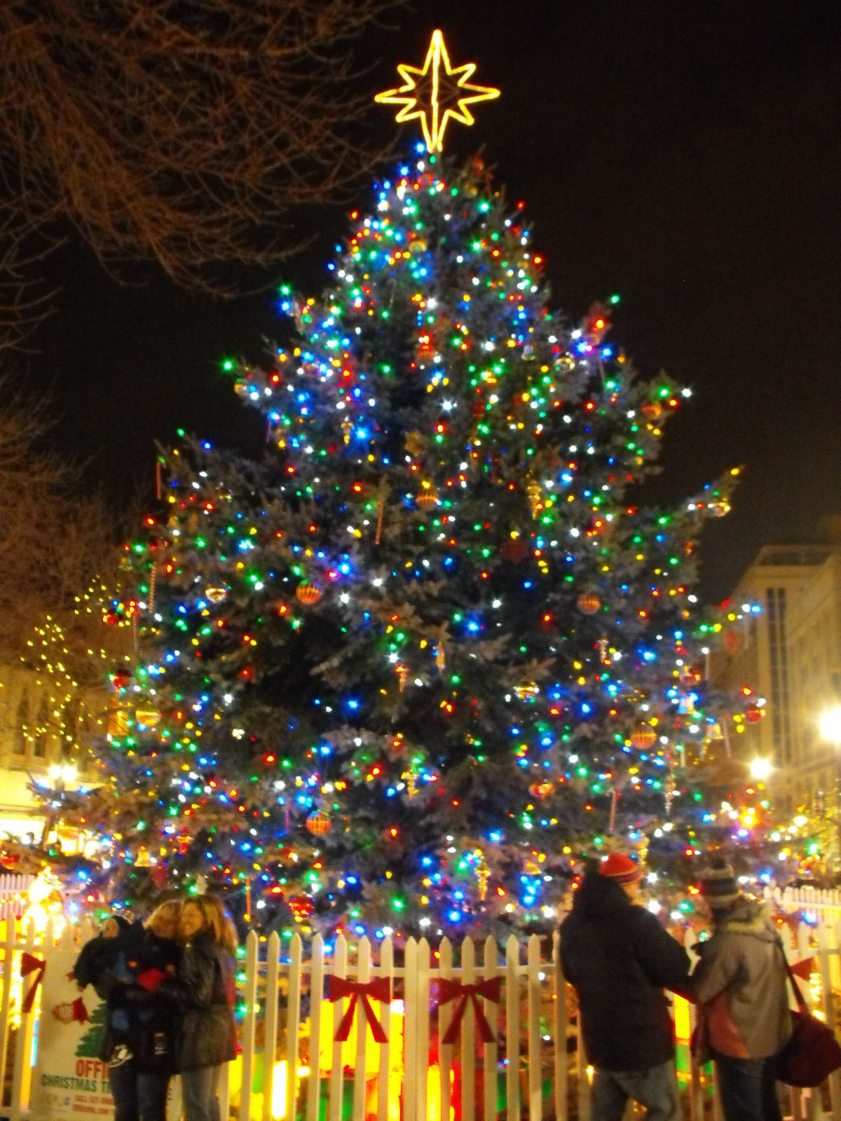 top 60 christmas tree decorating and present ideas pictures - Origin Of Christmas Trees