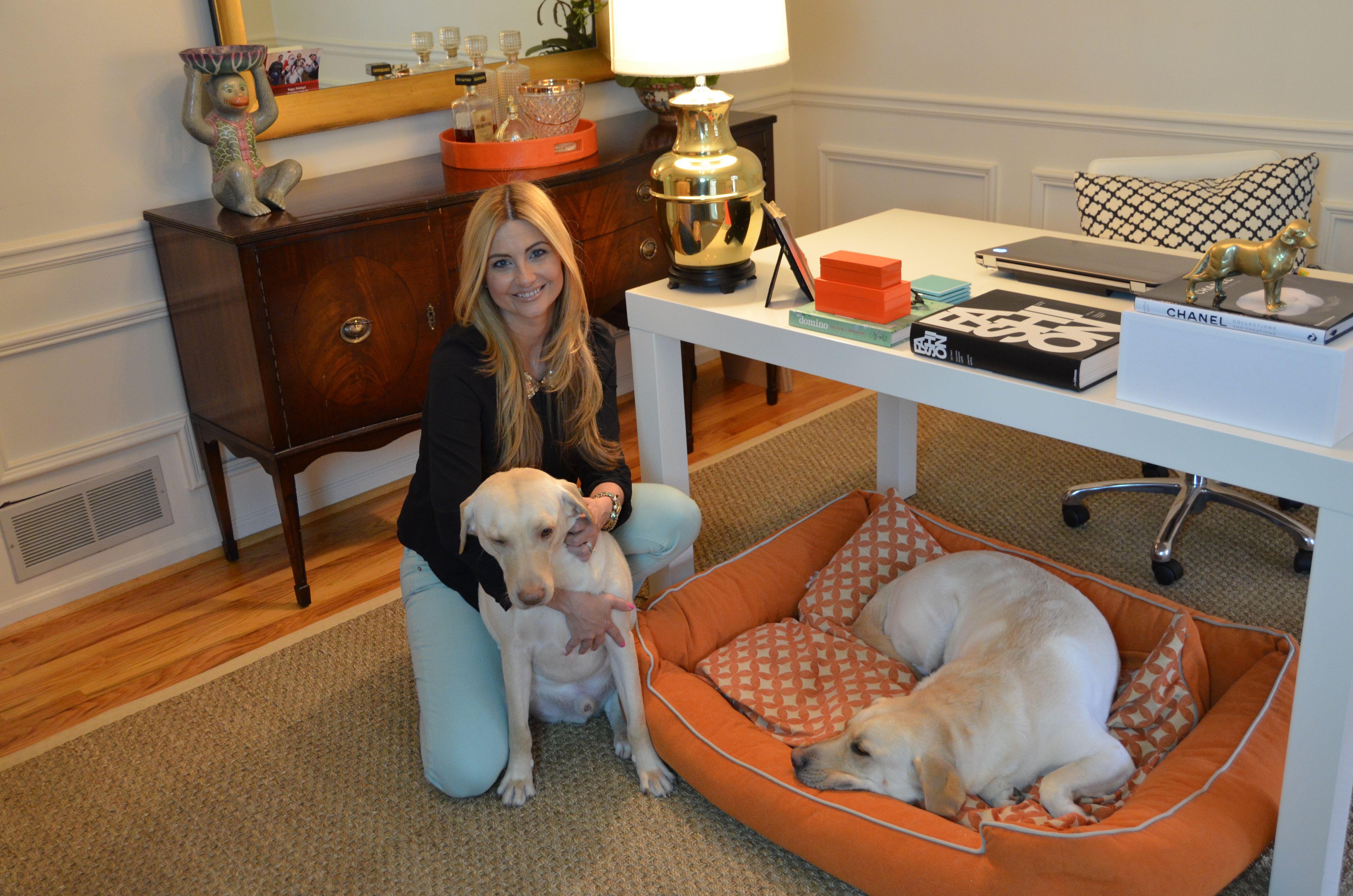 3SD Blog 3 Shades of Dog Ikat and Hermes Orange Dog Beds