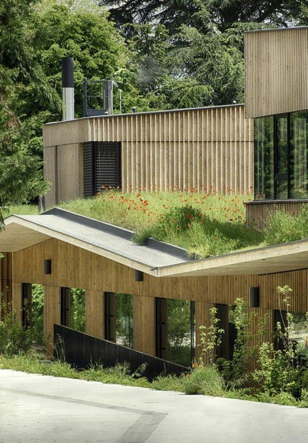 Le toit végétal en 77 photos Le toit, Vegetal et Le changement
