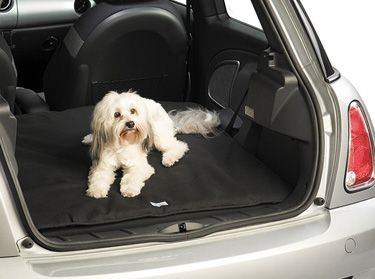 Room For The Sugar In My New Countryman Cooper Products I Love