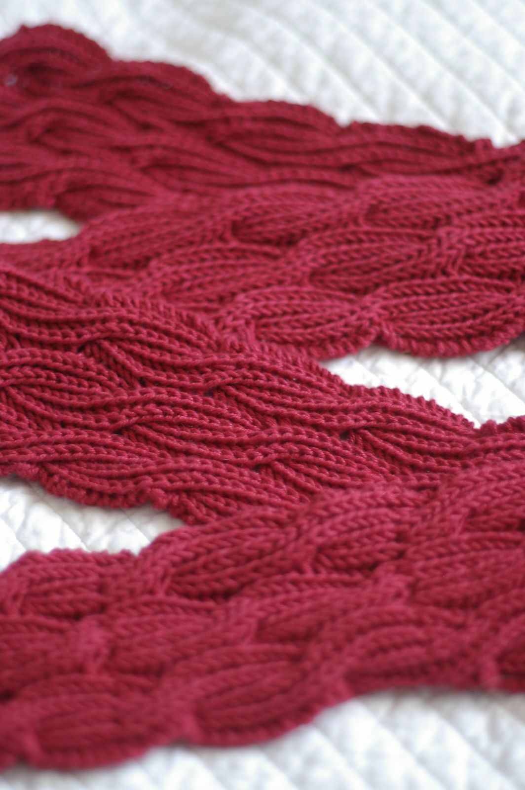 Reversible Cabled Brioche Stitch Scarf (free pattern) Knit ...