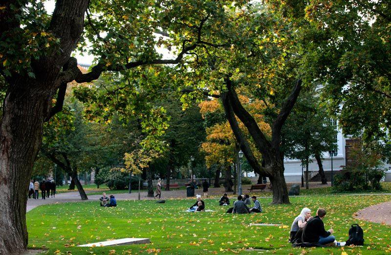 Vanha kirkkopuisto on keskustan suosituimpia oleskelupuistoja. Lempinimensä Ruttopuisto se sai 60-luvun nuorisolta [Lauri Hänninen]