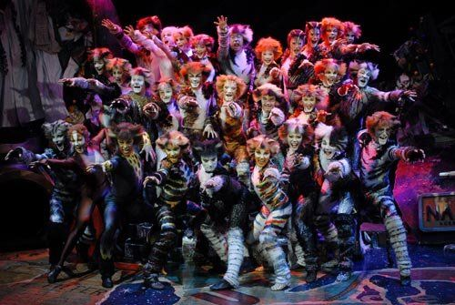 My Favorite Musical Of All Times Cats Musical Cat Movie Jellicle Cats