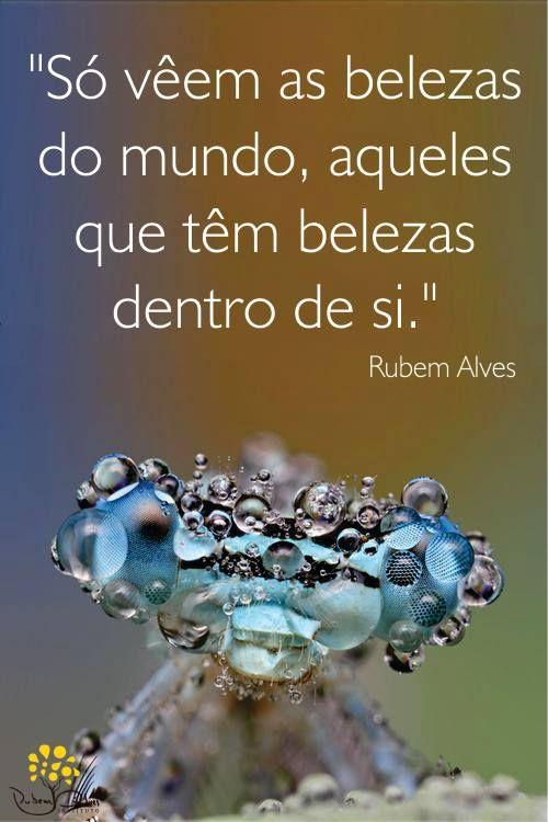 Prosa Trecos E Cacarecos Rubens Alves Reflection Words