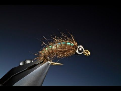 Tying the Flash back caddis larva with Barry Ord Clarke - YouTube