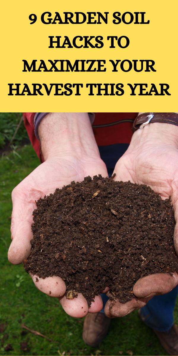 9 Garden Soil Hacks To Maximize Your Harvest This Year Gardening Sun Gardening Tips Soil Hacks Garden Soil