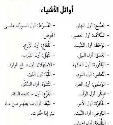 اوائل الأشياء Beautiful Arabic Words Movie Quotes Funny Arabic Words