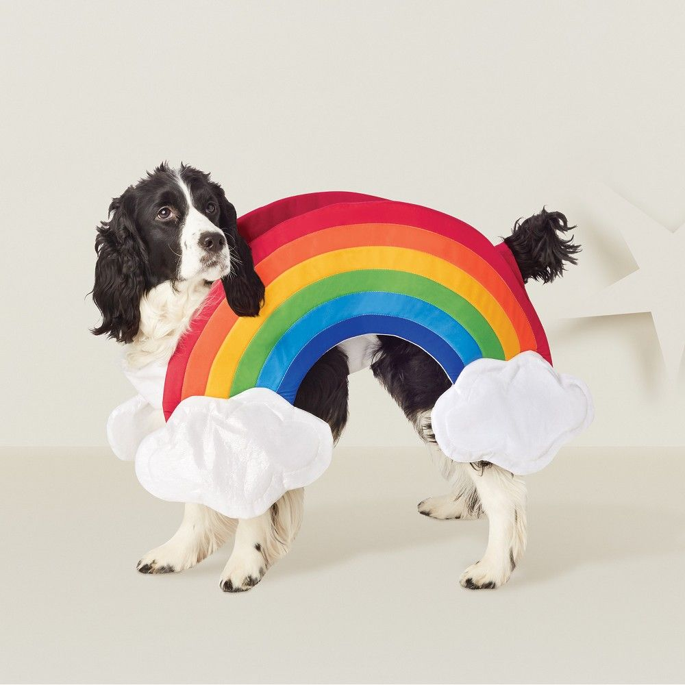 Halloween Rainbow Dog Costume Rainbow White Hyde And Eek
