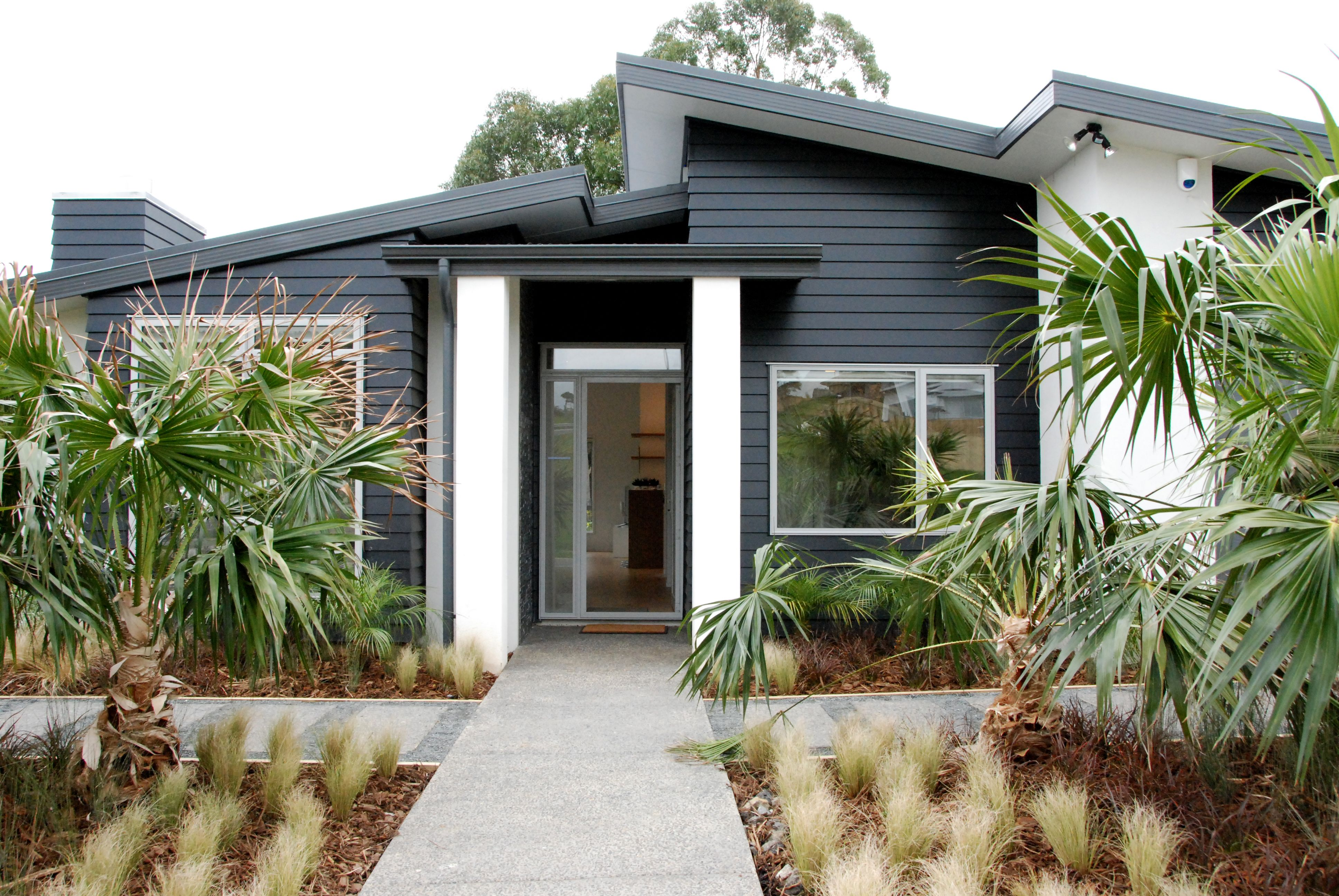 Our salinger home design with a mono pitch roof and blue weatherboard and white plaster nikau palms and native grasses give it a nz bach feel
