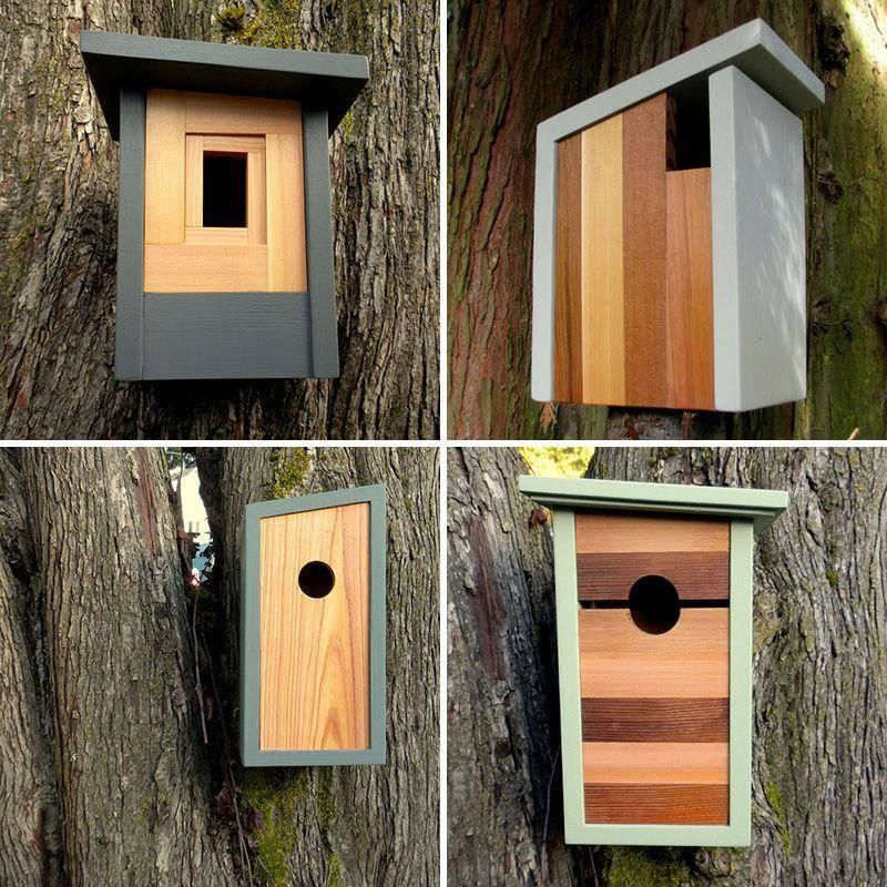 Express Handy Standards For Hassle Free Advanced Woodworking Tools How To Build Plans Coolwoodworkingtools Woo Wood Birdhouses Bird Houses Wooden Bird Houses