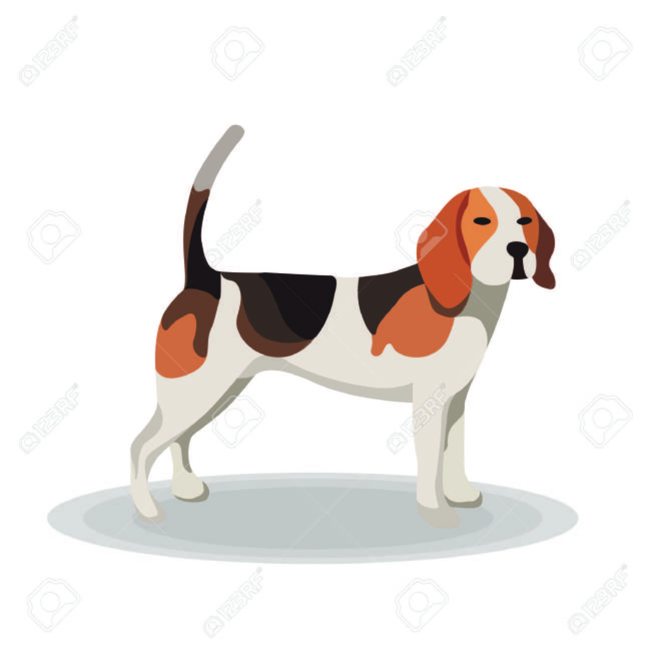 Illustration Beagle On White Background Sponsored Beagle