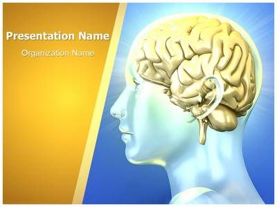 Human Brain Powerpoint Presentation Template Is One Of The Best