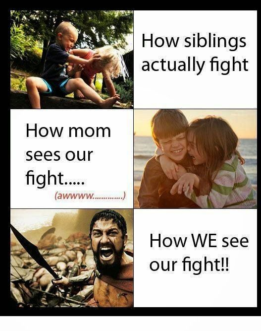Funny Jokes Pictures Google Search Funny Quotes Funny Sister