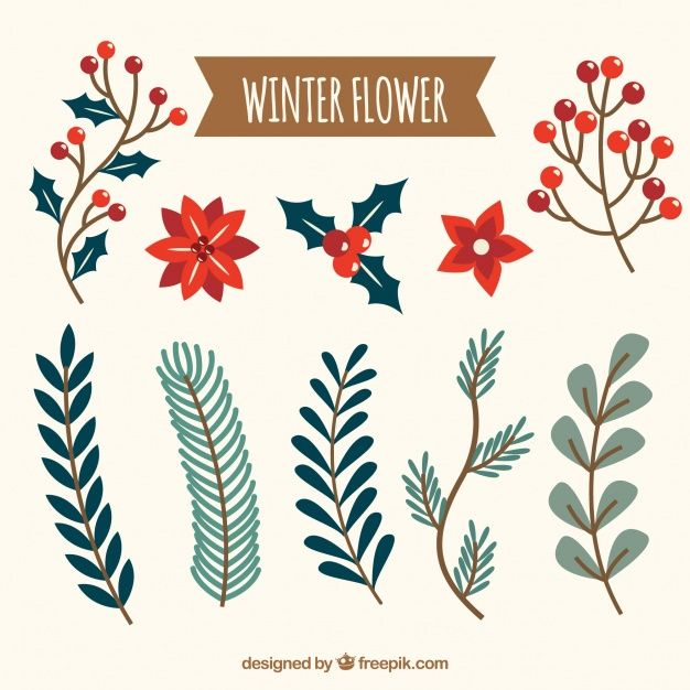 Download Collection Of Winter Flower for free