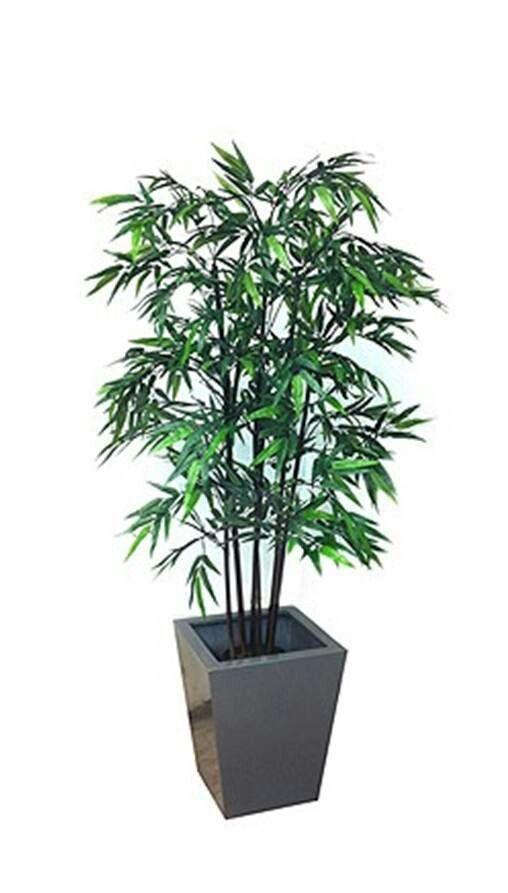 Arreglos florales para restaurantes oficinas y casas for Plantas decorativas artificiales df