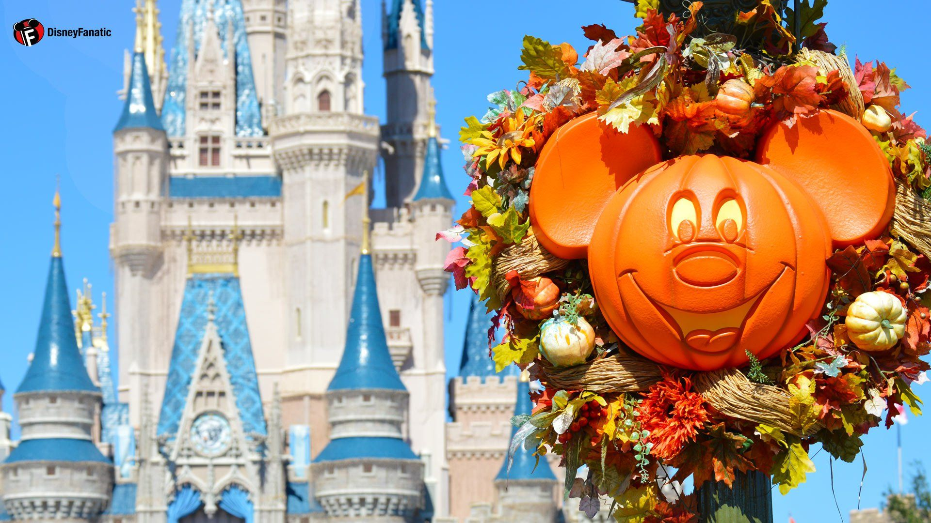 Walt Disney World Resort Wallpaper For Desktop Laptop And Halloween Desktop Wallpaper Fall Wallpaper Iphone Wallpaper Fall
