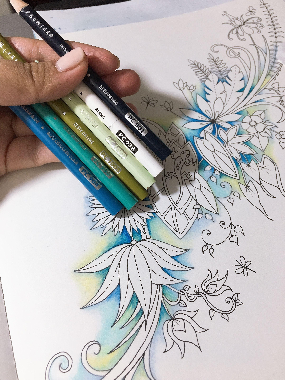 Jjohanna Bassford In 2020 Color Pencil Art Colored Pencil Techniques Coloring Book Art
