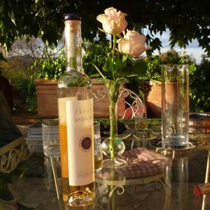 DOCG Feast in Umbrian Paradise